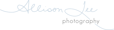 Allison Lee | Sydney Child and Family Photographer logo