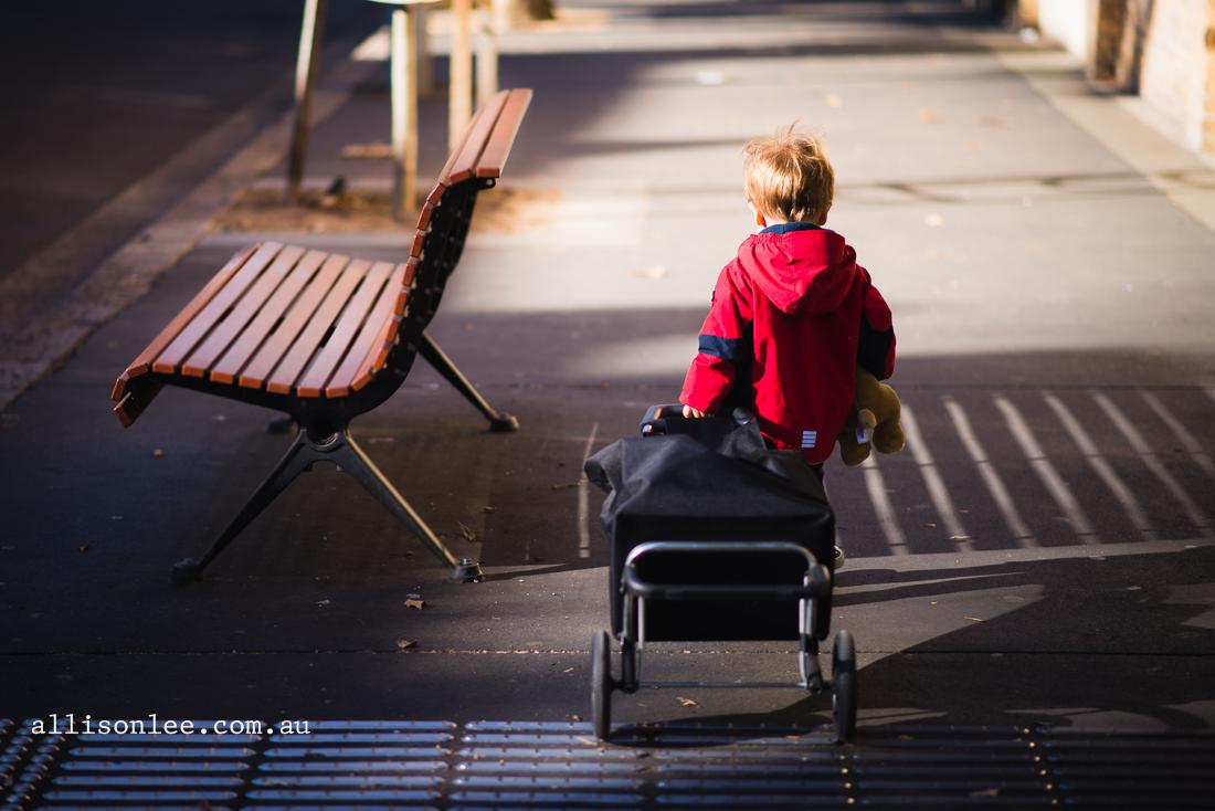 Toddler boy in Pyrmont
