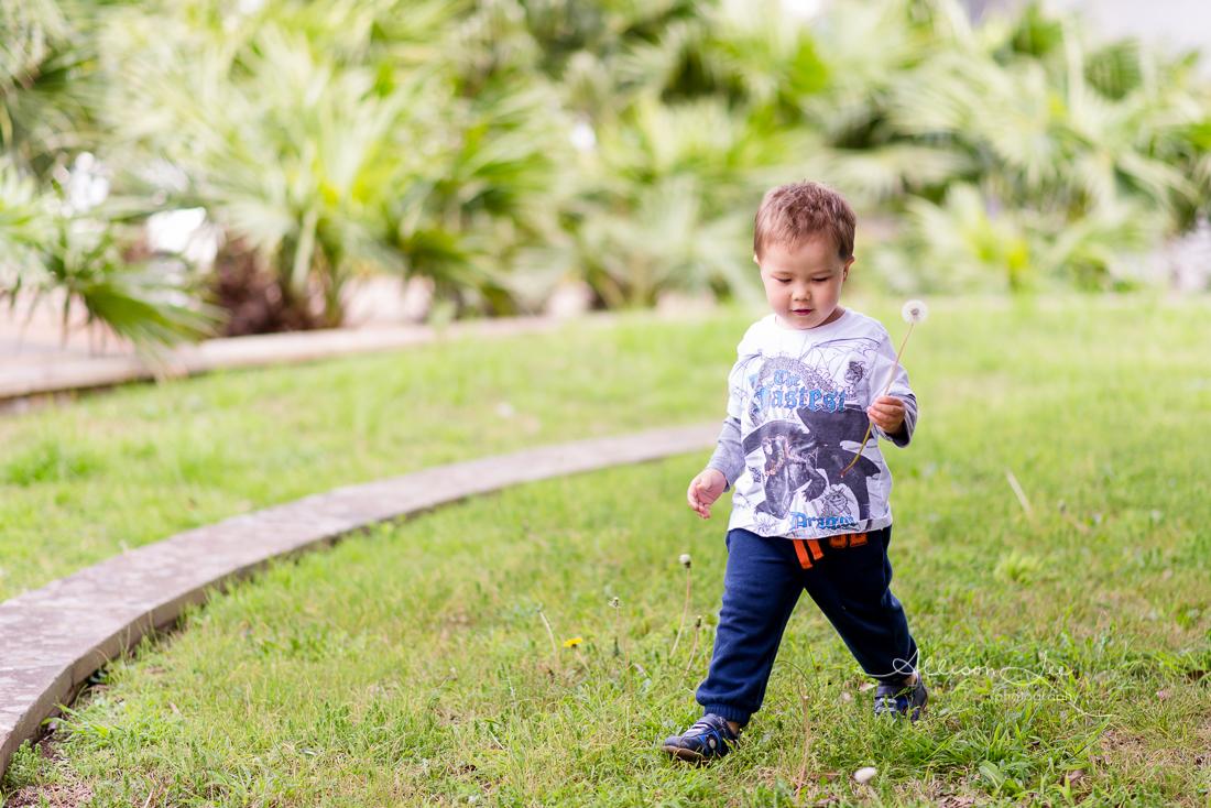 Little boy in Pyrmont Child Photographer