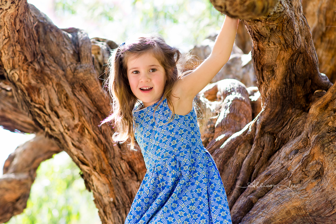 Portrait of little girl climbing tree in Sydney